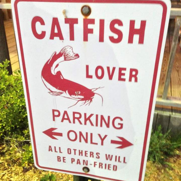 Catfish lover parking only - all others will be pan-fried (at Fat Baby's Catfish House in Cleveland)